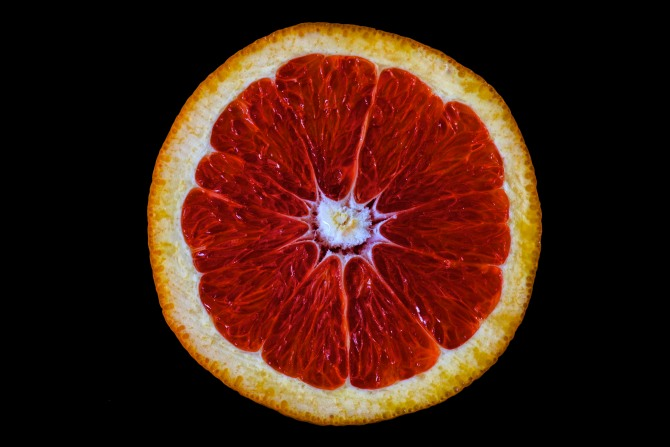 Citrus Study - 1