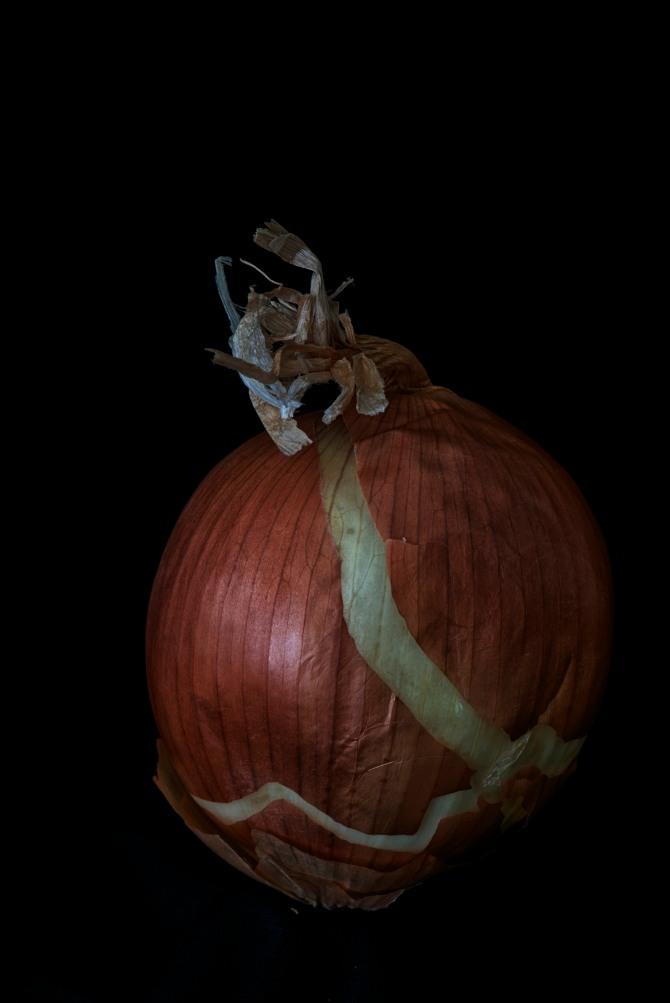 Consider The Onion - 4