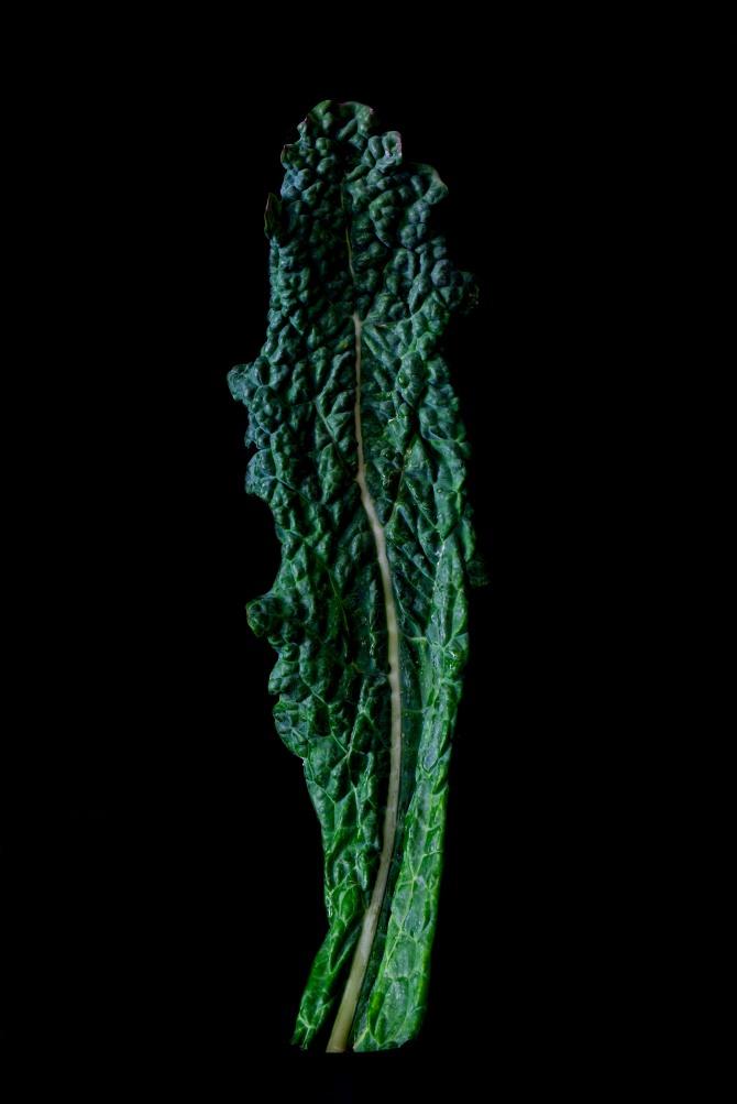 Consider The Kale Leaf - 2