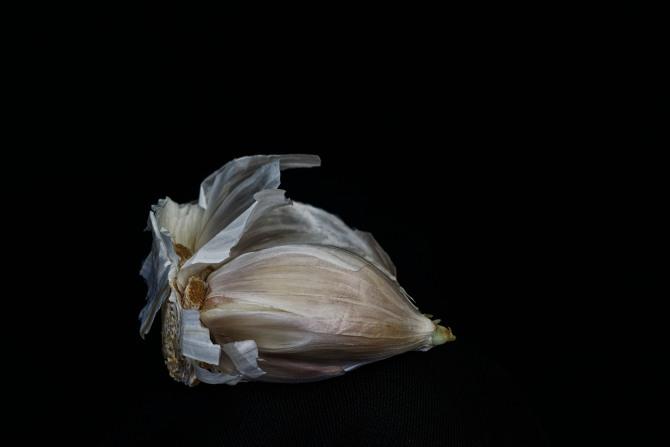Consider The Garlic - 1