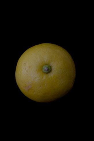 Consider The Lemon - 2