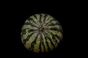 Consider The Watermelon - 1
