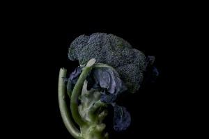 Consider The Broccoli - 2