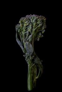 Consider The Broccolini - 1