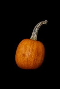Consider The Pumpkin - 1