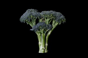 Consider The Broccoli - 3